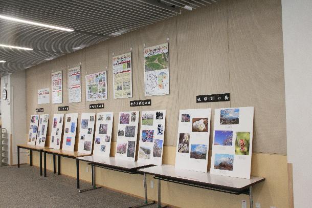 幸区役所1階ロビーハナミズキに展示の様子